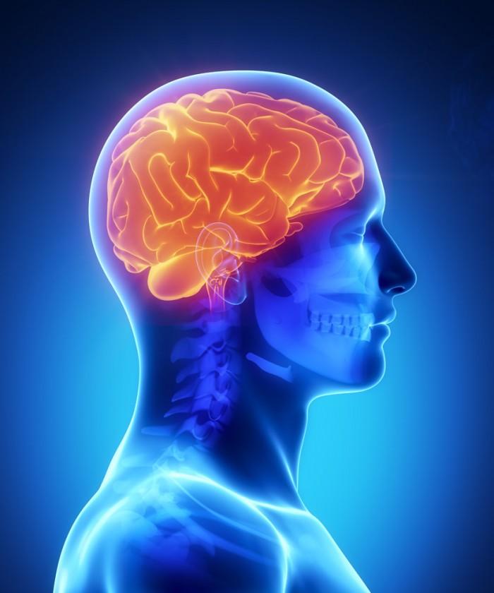 braincolorpower